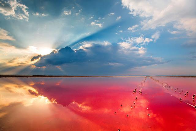 poze-lac rosu
