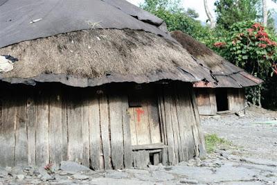 Contoh Desain Rumah Adat Papua