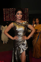 Shreya Saran in Skin Tight Golden Gown ~  Exclusive 033.JPG