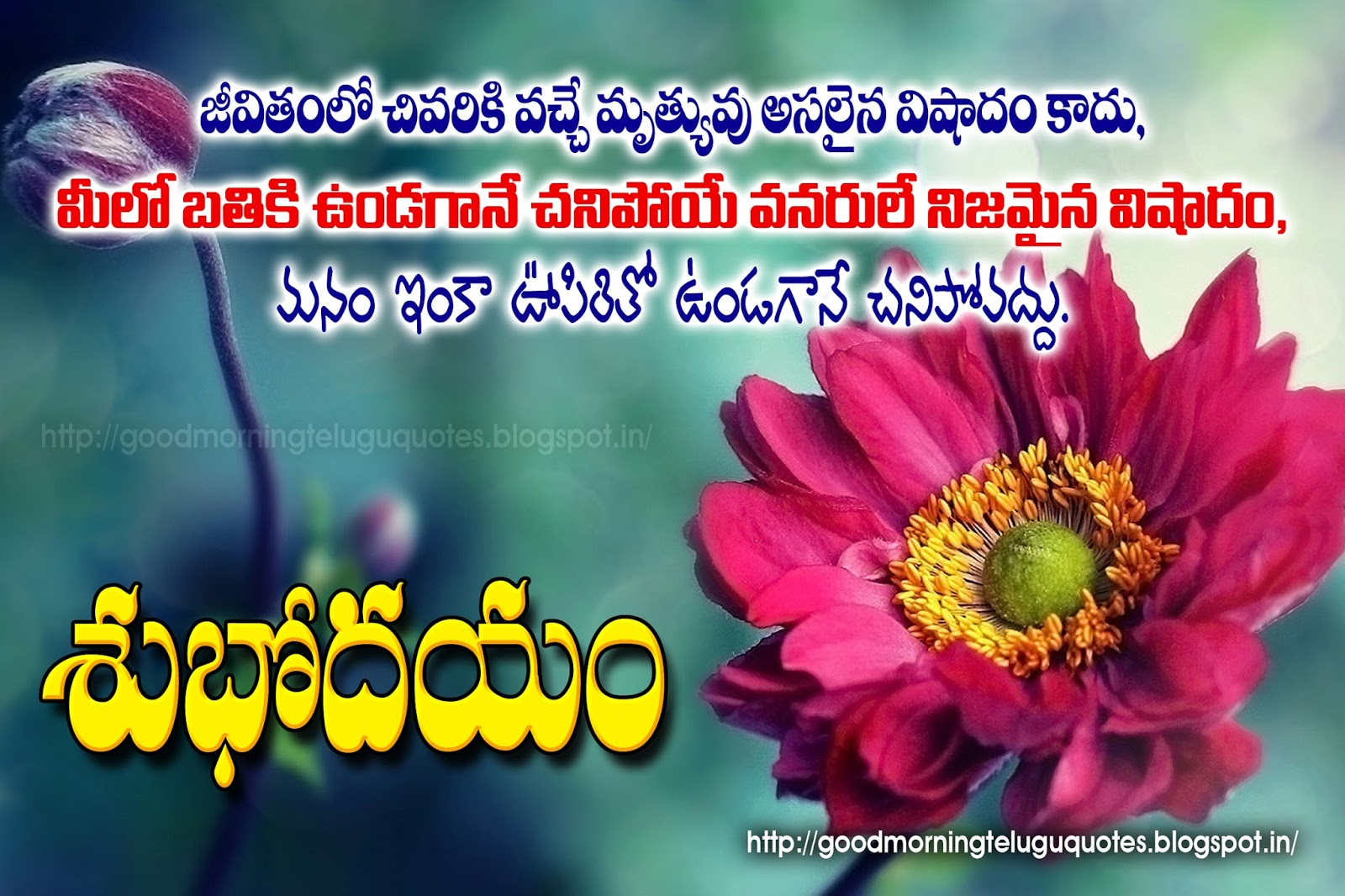 Inspiring Telugu Good Morning Quotes Wishes Walllpapers