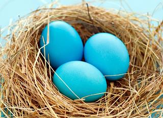 Mavi Yumurta artık Türkiye'de!