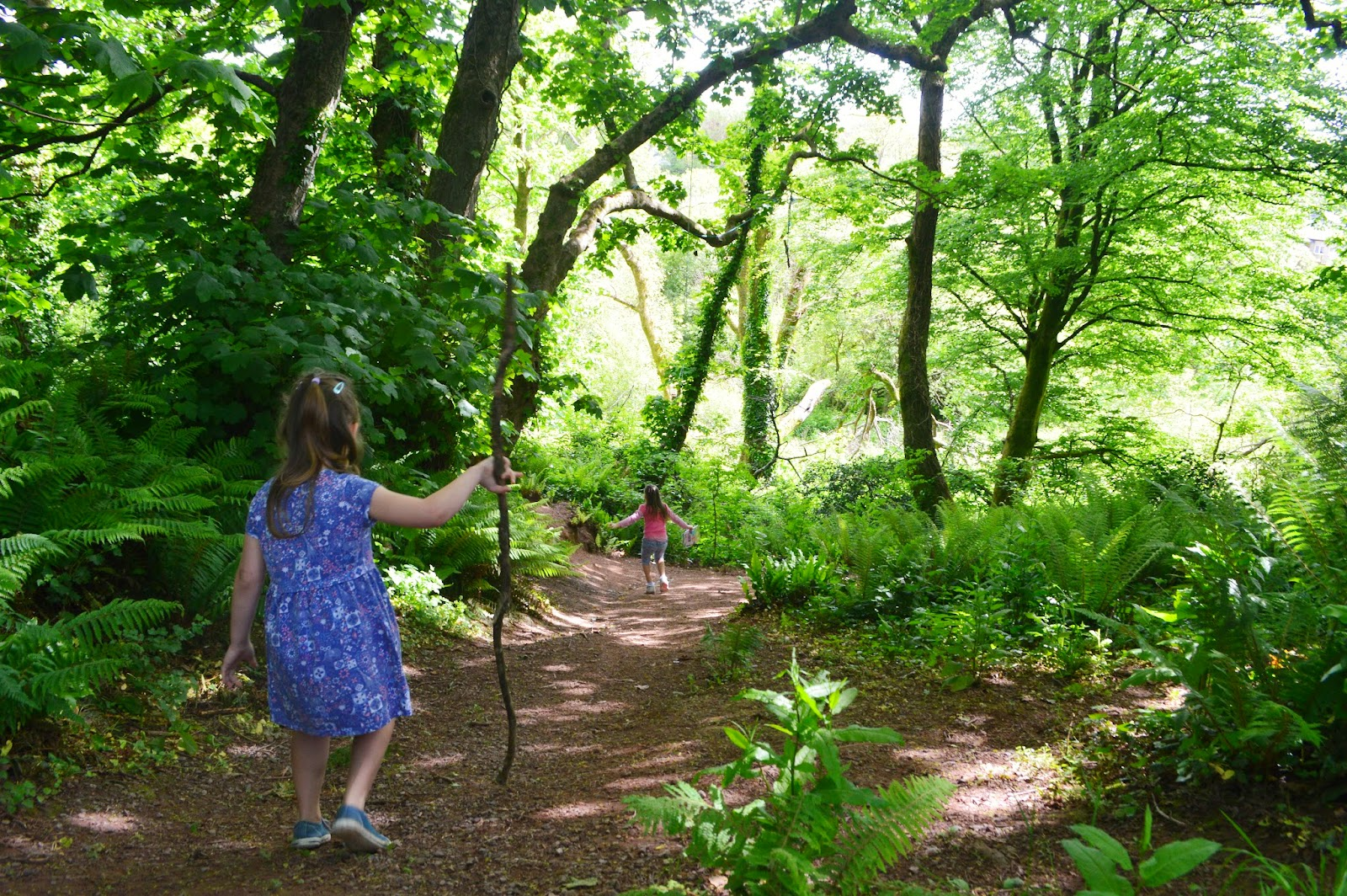 , Finding Magic in the Fairy Woods – Do you Believe?