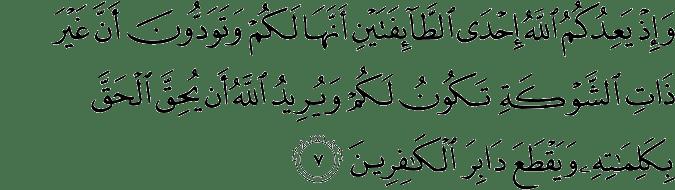 Surat Al Anfal Ayat 7
