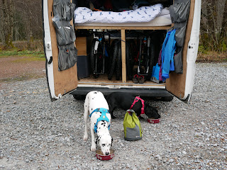 two dogs eating dinner outside van conversion with dog food bag