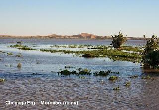 dunes desert rain chegaga morocco maroc