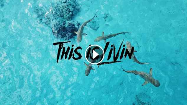 This is Livin Episode 17 Tahiti