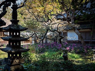 Autumn garden: Jyochi-ji