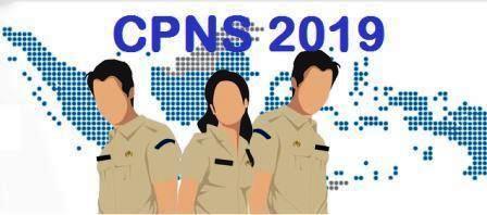 Pemkab Jayapura Buka 639 Formasi CPNS, Pendaftaran Mulai April 2019
