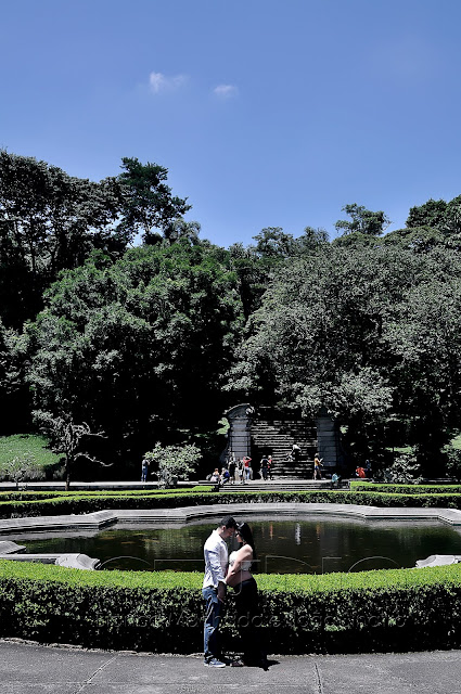 idéias para fotografia no jardim botanico sp