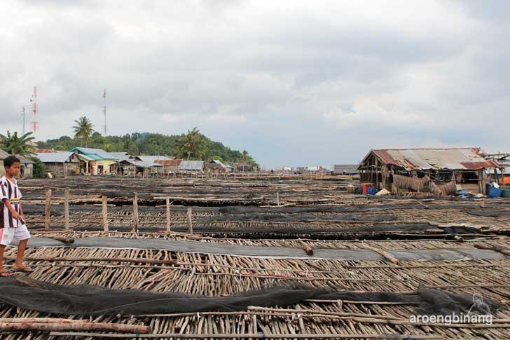 kampung nelayan bugis tanjung binga belitung
