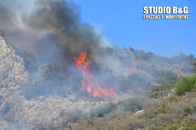 Υψηλός ο κίνδυνος εκδήλωσης πυρκαγιάς σήμερα και στην Αργολίδα (χάρτης)