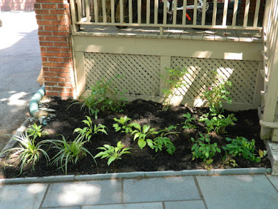 Mount Pleasant East Davisville New Front Shade Garden After by Paul Jung Gardening Services--a Toronto Gardening Company