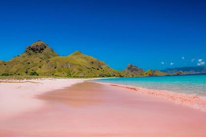 Pesona Pink Beach Di Pulau Komodo Labuan Bajo Nusa Tenggara Timur