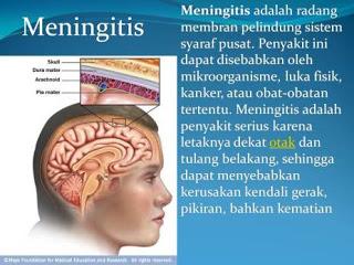 apa penyebab meningitis