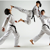 Things to consider when looking formartial arts schools Scarborough