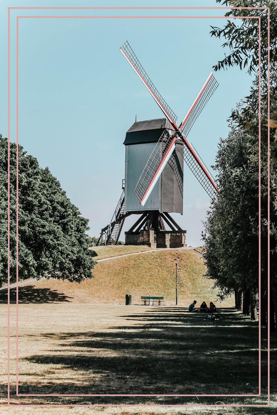 Famous Windmill Trail Walk in Brugge Belgium