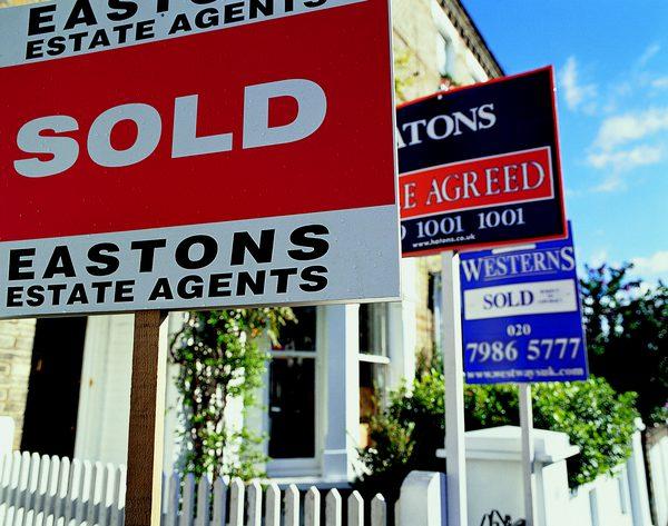 Tips Membeli Tanah untuk Membangun Rumah Baru
