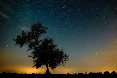 augusztusi csillaghullás, hullócsillag, meteorit, üstökös, Perseida-maximum, perseidák,
