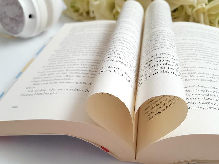 Rezension: Das Leben fällt, wohin es will - Petra Hülsmann Buch Tipp Sommer Roman 3