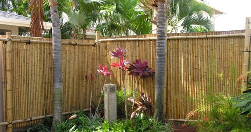 Quality Bamboo And Asian Thatch Creasian S Bamboo Poles