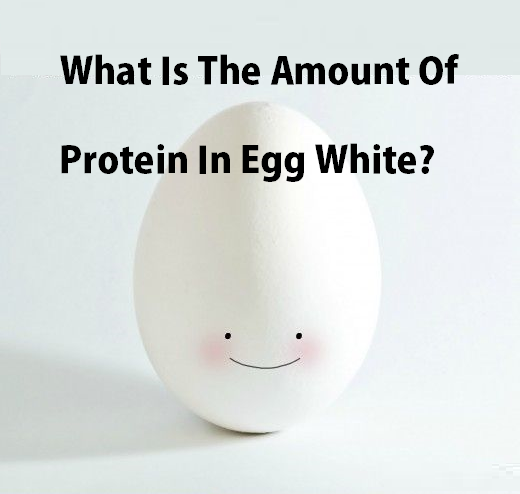 Egg White Protein And Nutrition Facts