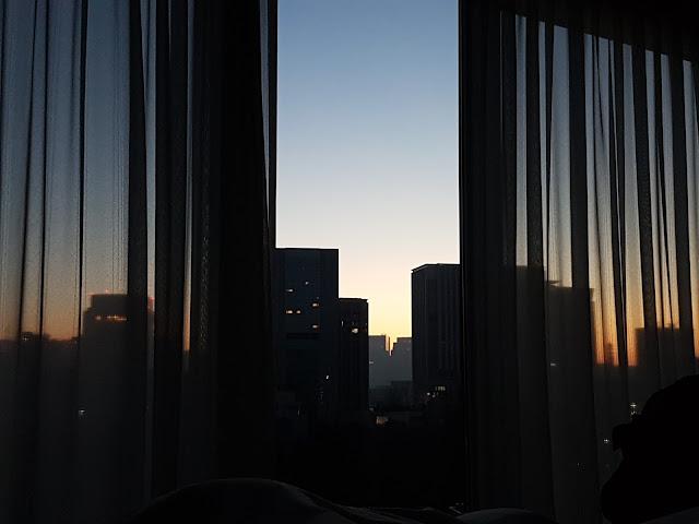 alba a tokyo hotel new omani akasaka negozio omotesando cosa visitare a tokyo cosa vedere a tokyo viaggio a tokyo felym takes japan trip in tokyo mariafelicia magno blog di viaggi travel blog
