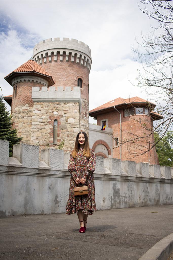 adina nanes castelul din oras