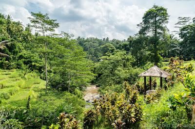 Sungaï Ayung - Ubud - Bali