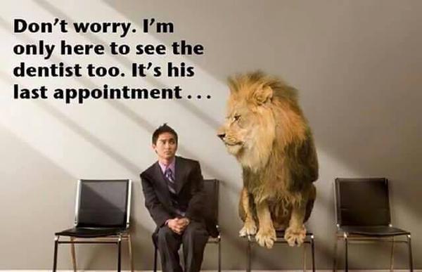 Lion Visits Dentist picture