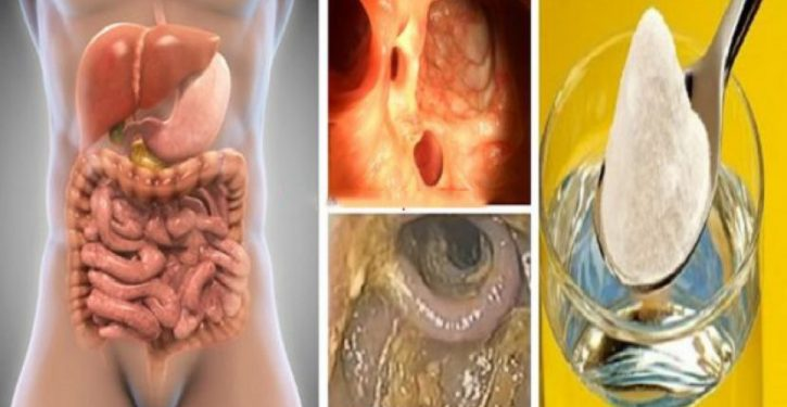 Program To Detoxify Liver, Colon, Kidneys And Eliminate All Toxins And Body Fats