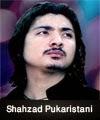 http://www.humaliwalayazadar.com/2015/04/shahzad-pukaristani-nohay-2011-to-2016.html