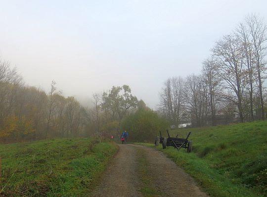 Dolina Iwelki w Chyrowej.
