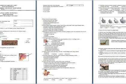 Contoh Soal & Kunci Jawaban - UAS Semester 1 Kelas 5 SD Pelajaran IPA