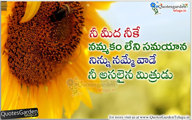 Real Friendship Quotes when a friend in need - Quotes Garden Telugu