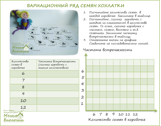 мирмекохория-мирмекофилия-муравьи-семена-хохлатки-вариационная-кривая