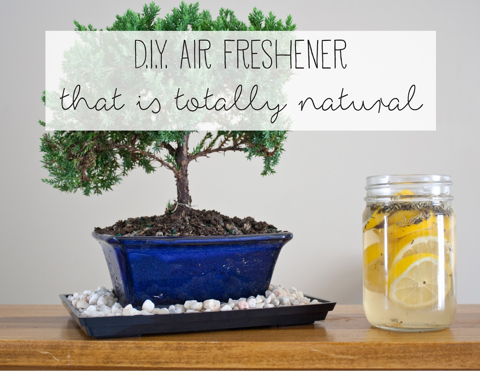Natural Air Freshner