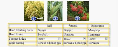 contoh penggolongan tumbuhan