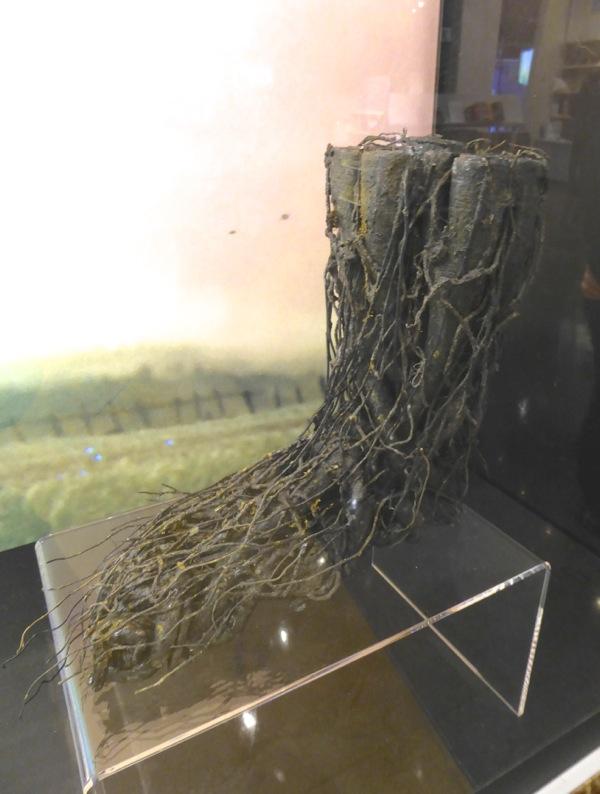 A Monster Calls tree creature foot model