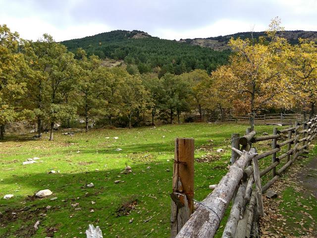 Ruta-cascadas-del-purgatorio-Rascafria