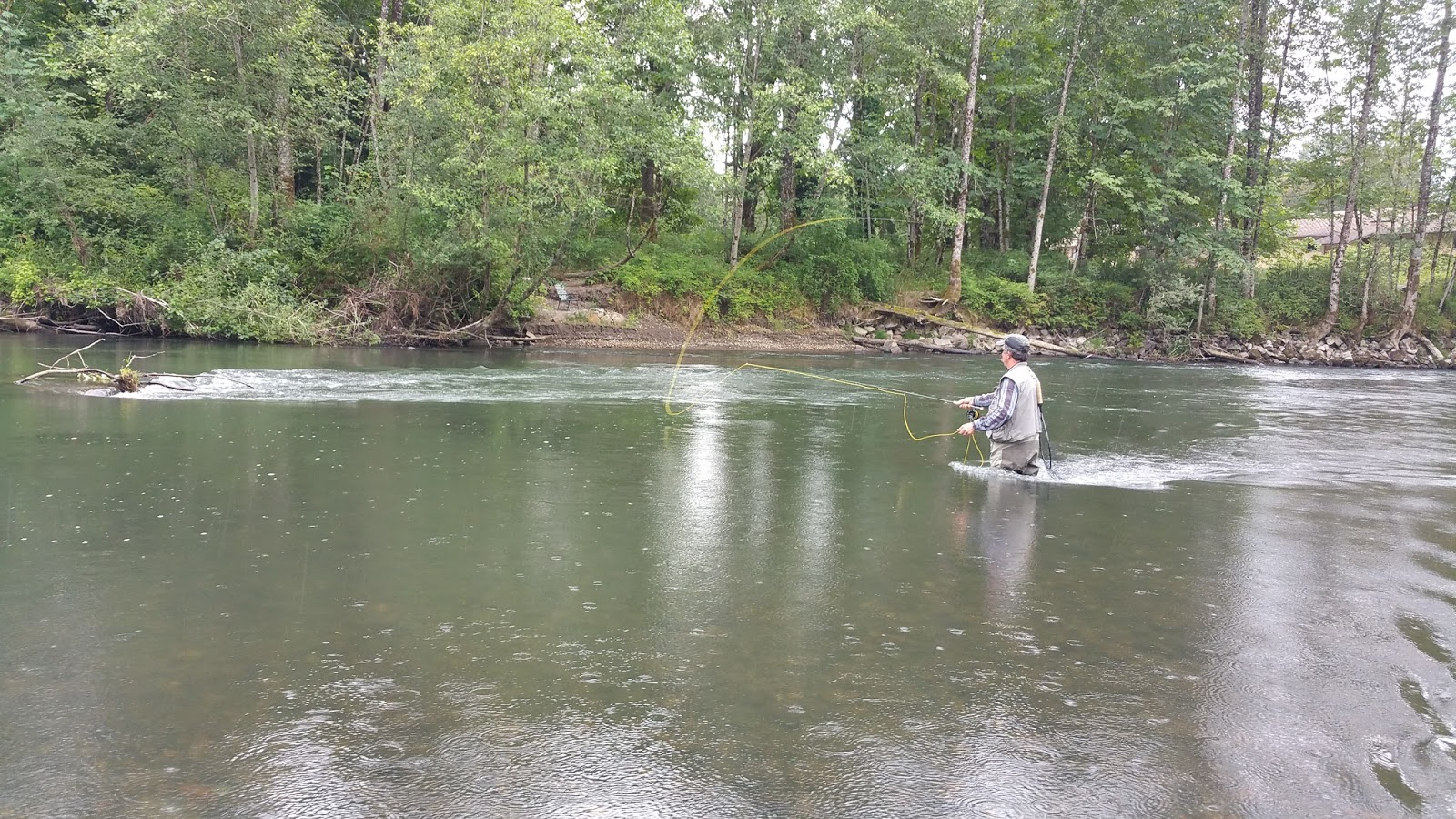 Living dangerously the poetry and science of nisqually for Nisqually river fishing