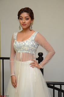 Anu Emmanuel in a Transparent White Choli Cream Ghagra Stunning Pics 129.JPG