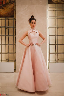 Tamannaah Bhatia looks radiant in a Mark Bumgarner gown for the Vanitha Awards 2017 ~  04.jpg
