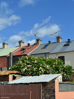 newtown roofs