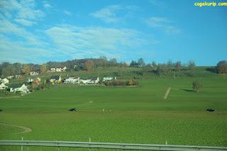 Landscape di Swiss