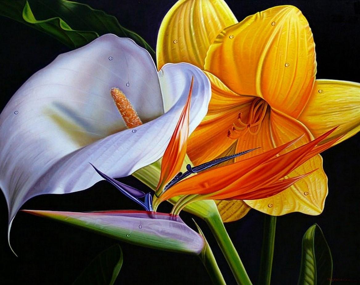 Cuadros modernos pinturas y dibujos flores ex ticas - Pintar en lienzo para principiantes ...