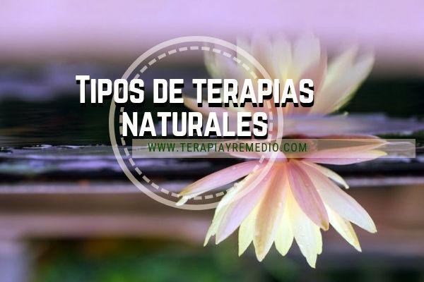 Los tipos de terapias naturales: Depuración, Higiene de vida, Estructura Corporal entre otras