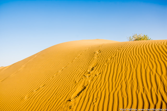Sand Dunes at Sam, Jaisalmer, Rajasthan.