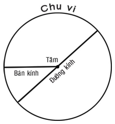 Hỏi: Công thức tính diện tích hình tròn?