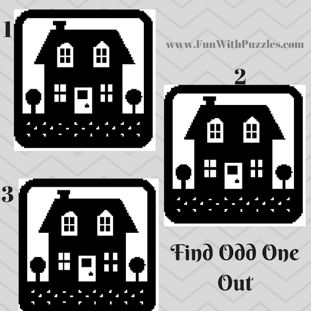 Odd One Out Hut Picture Puzzle-1