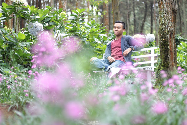 feryarifian travel blogger and food blogger malang - taman bunga coban talun